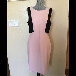 WHBM Body Perfecting Dress Color-Block dress